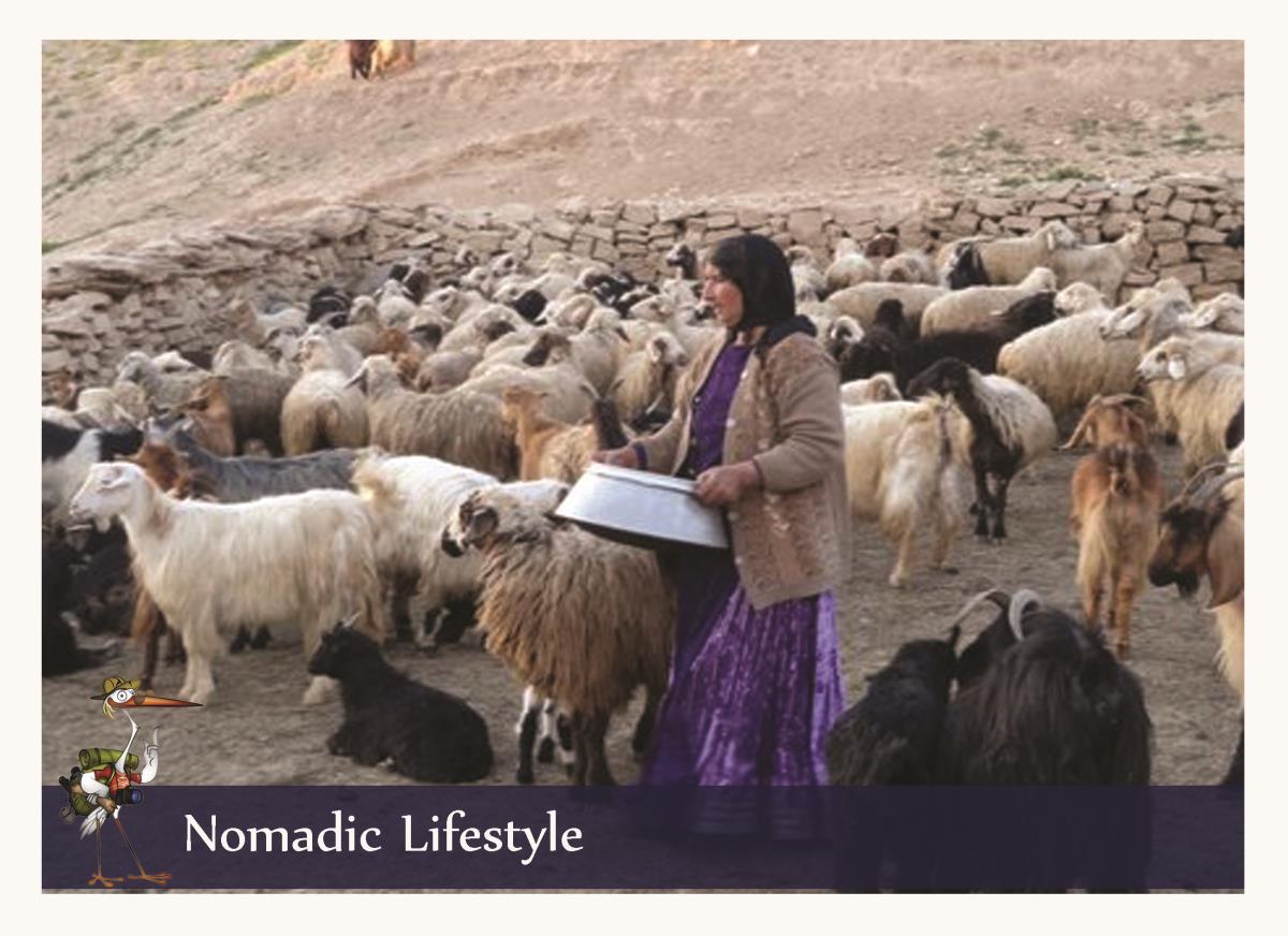 nomad lifestyle