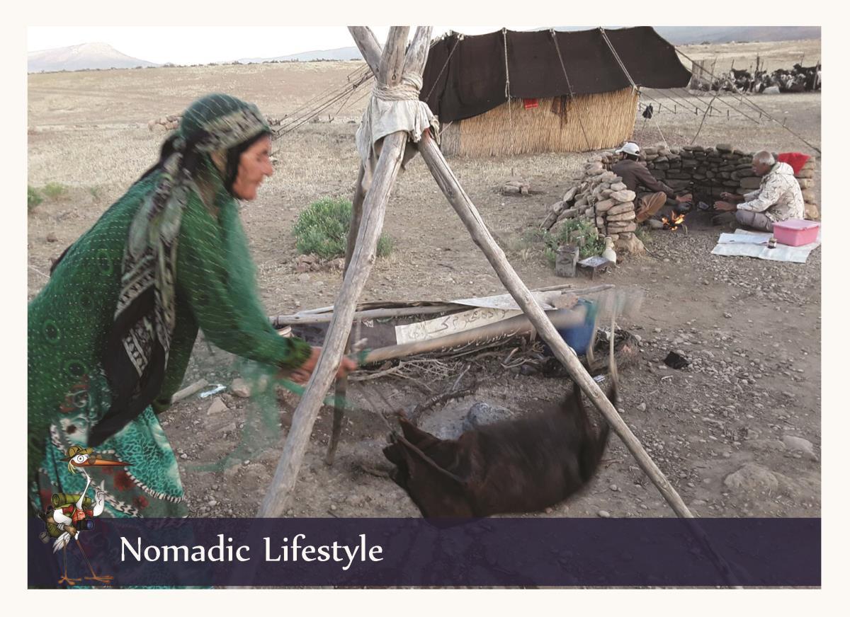 nomadic life style