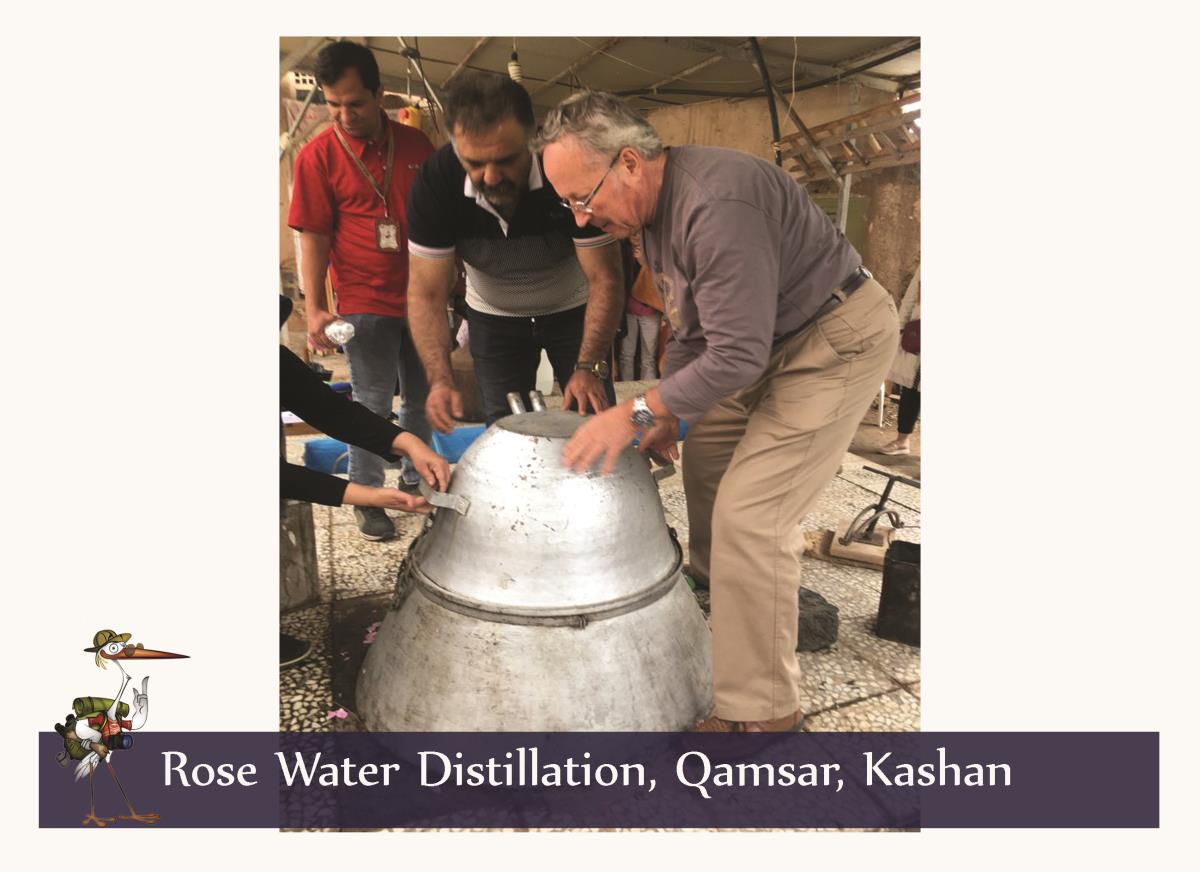 rose water 1