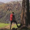 Nature Exploring